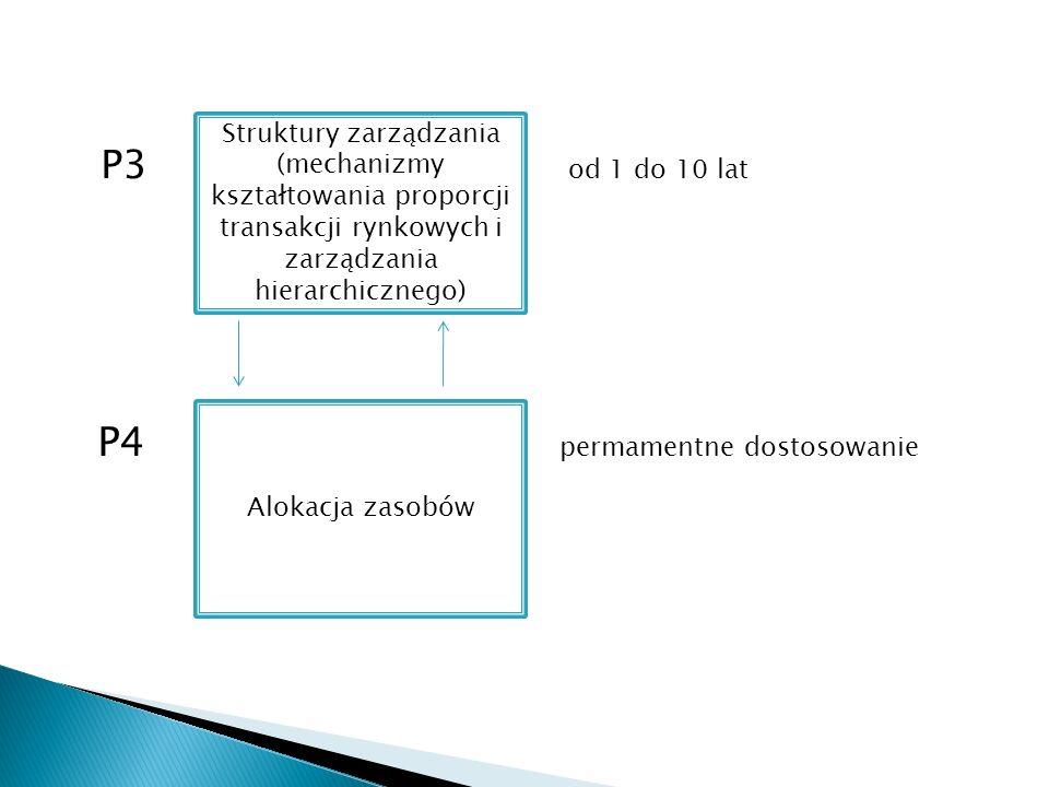 P3 od 1 do 10 lat P4 permamentne dostosowanie Struktury zarządzania (mechanizmy kształtowania proporcji transakcji rynkowych i zarządzania hierarchicznego) Alokacja zasobów