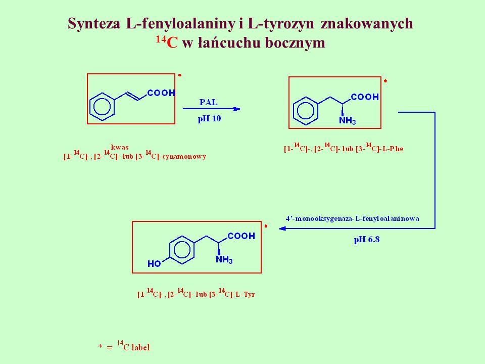 Synteza L-fenyloalaniny i L-tyrozyn znakowanych 14 C w łańcuchu bocznym