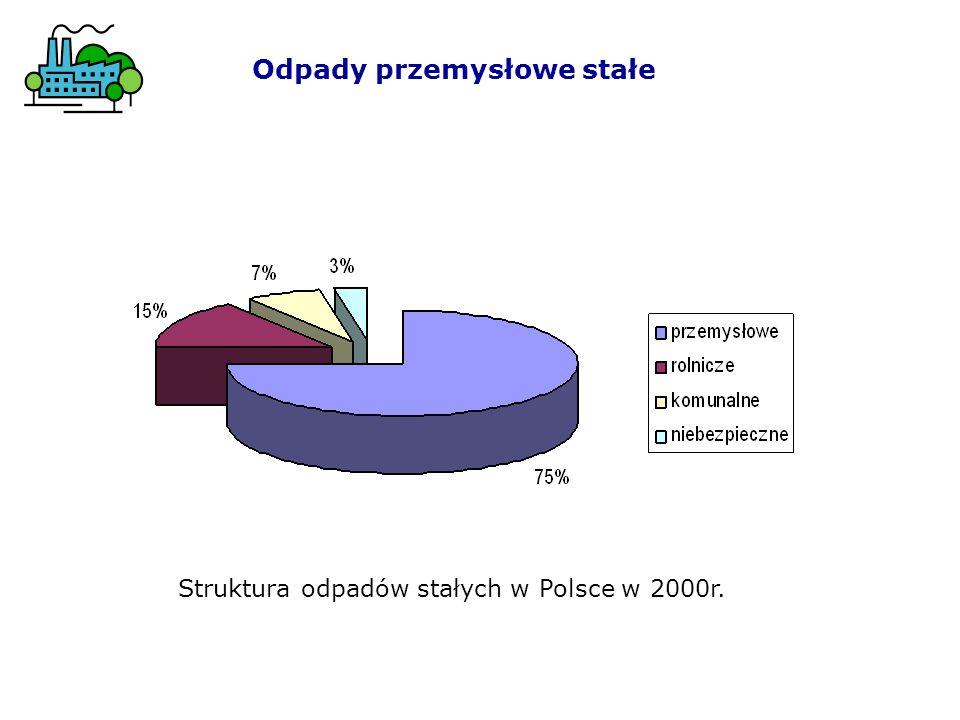 Odpady przemysłowe stałe Struktura odpadów stałych w Polsce w 2000r.