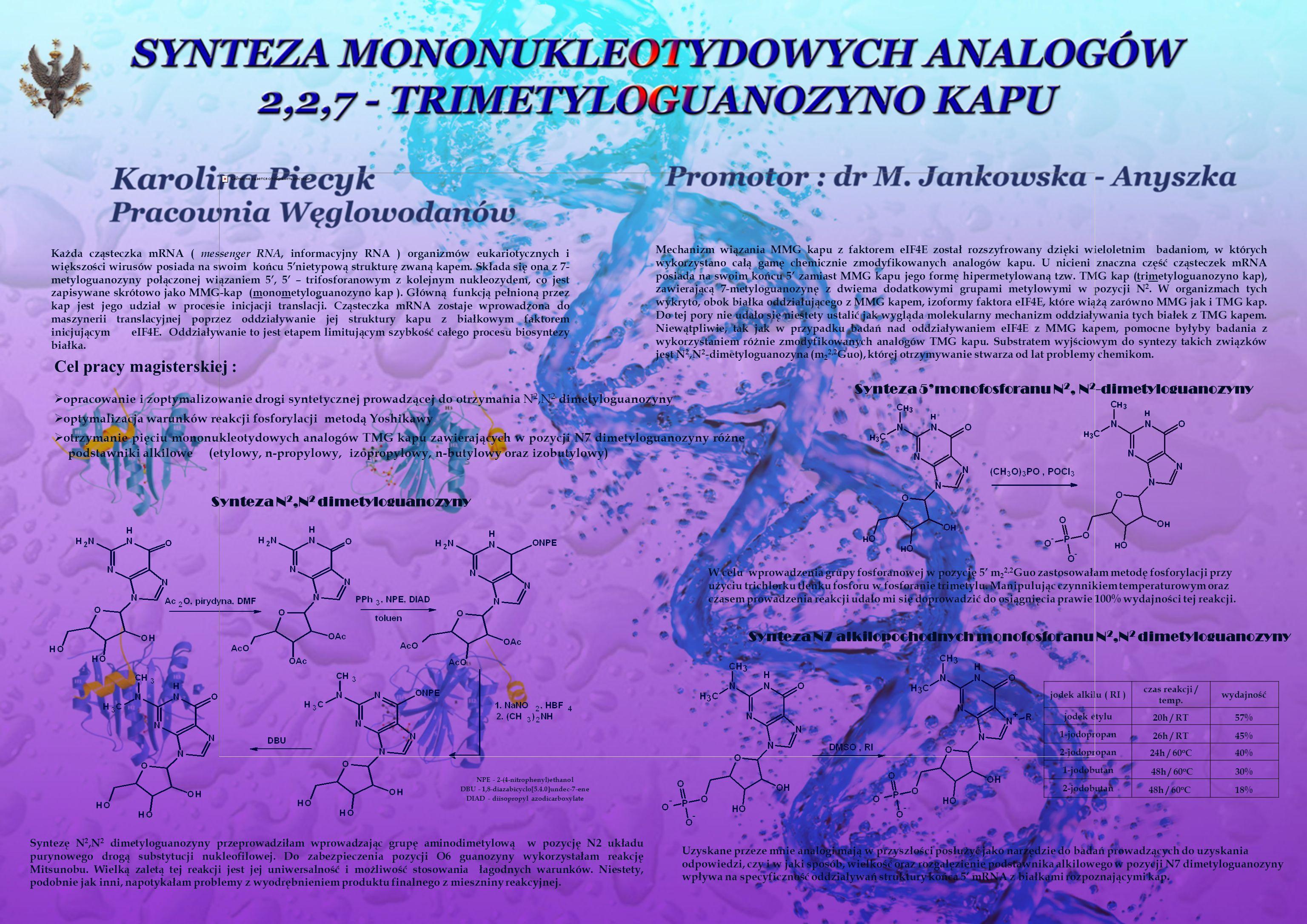 Każda cząsteczka mRNA ( messenger RNA, informacyjny RNA ) organizmów eukariotycznych i większości wirusów posiada na swoim końcu 5nietypową strukturę zwaną kapem.