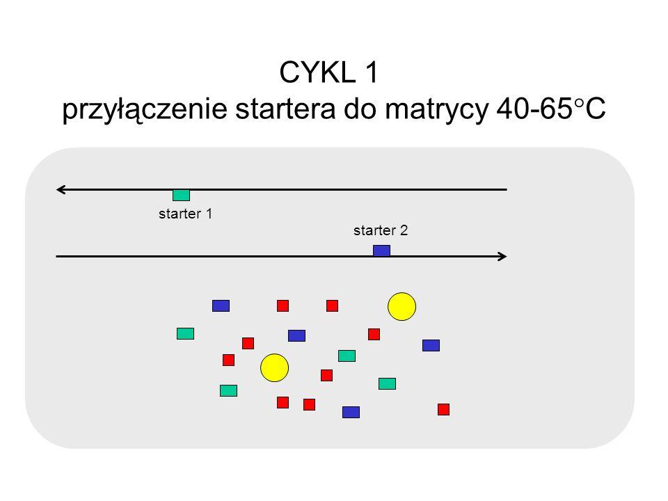 CYKL 1 przyłączenie startera do matrycy 40-65 C starter 1 starter 2