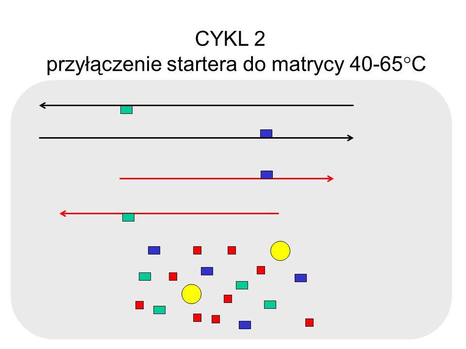 CYKL 2 przyłączenie startera do matrycy 40-65 C