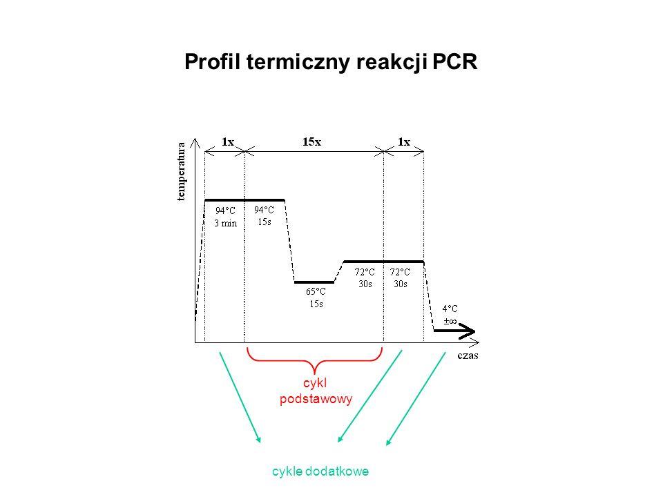 Profil termiczny reakcji PCR cykl podstawowy cykle dodatkowe