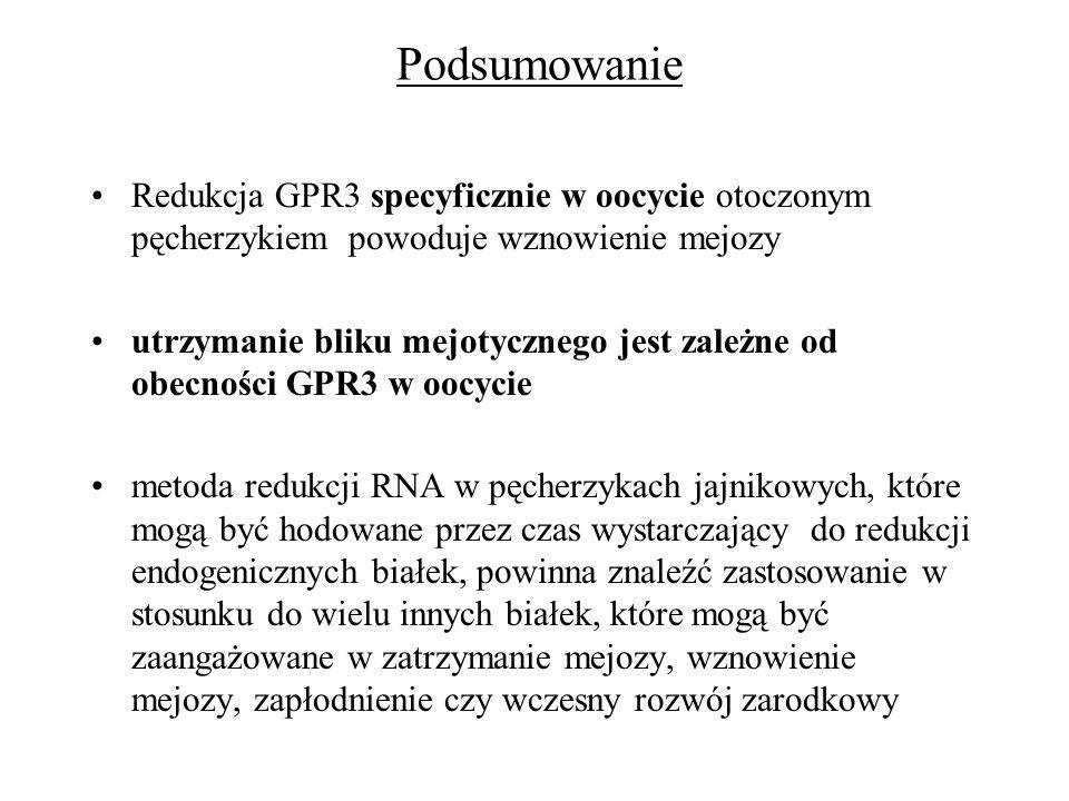 Podsumowanie Redukcja GPR3 specyficznie w oocycie otoczonym pęcherzykiem powoduje wznowienie mejozy utrzymanie bliku mejotycznego jest zależne od obec