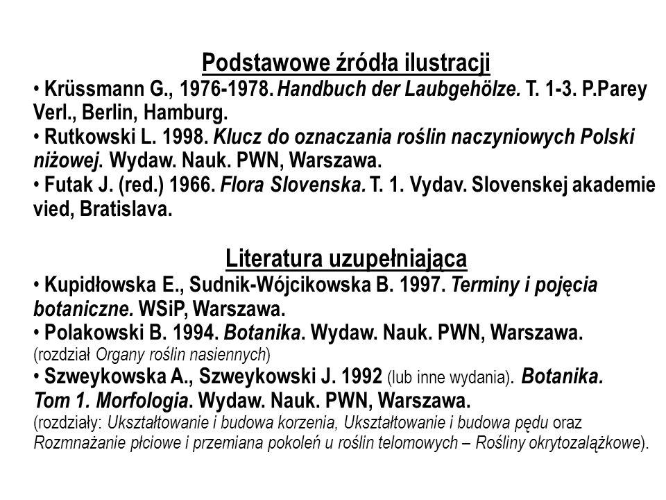 Podstawowe źródła ilustracji Krüssmann G., 1976-1978. Handbuch der Laubgehölze. T. 1-3. P.Parey Verl., Berlin, Hamburg. Rutkowski L. 1998. Klucz do oz
