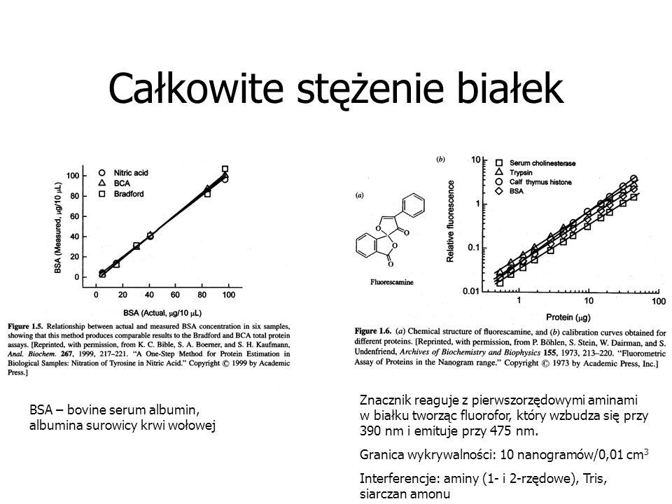 Całkowite stężenie białek BSA – bovine serum albumin, albumina surowicy krwi wołowej Znacznik reaguje z pierwszorzędowymi aminami w białku tworząc flu