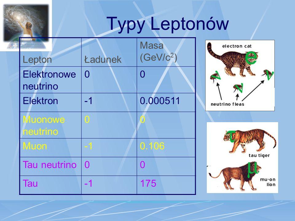 Typy Leptonów LeptonŁadunek Masa (GeV/c 2 ) Elektronowe neutrino 00 Elektron0.000511 Muonowe neutrino 00 Muon0.106 Tau neutrino00 Tau175