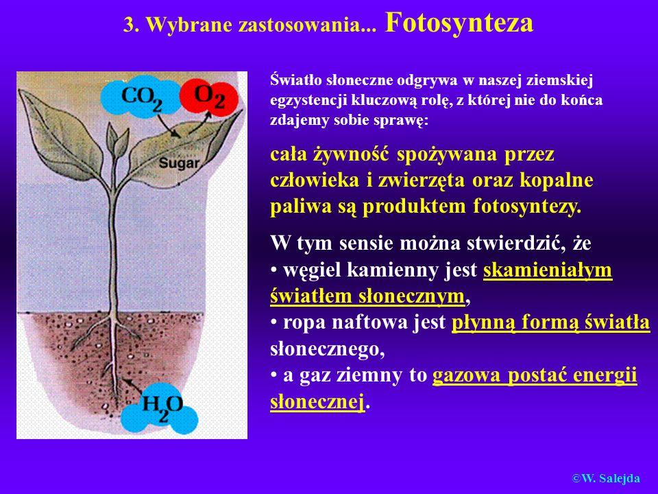 3. Wybrane zastosowania... Fotosynteza Światło słoneczne odgrywa w naszej ziemskiej egzystencji kluczową rolę, z której nie do końca zdajemy sobie spr