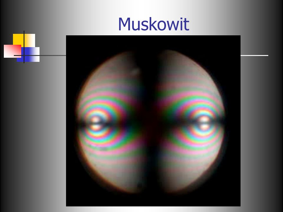Muskowit