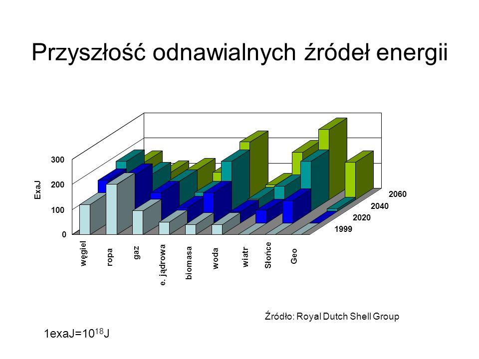 Przyszłość odnawialnych źródeł energii Źródło: Royal Dutch Shell Group 0 100 200 300 węgiel ropa gaz e. jądrowa biomasa woda wiatr Słońce Geo 1999 202
