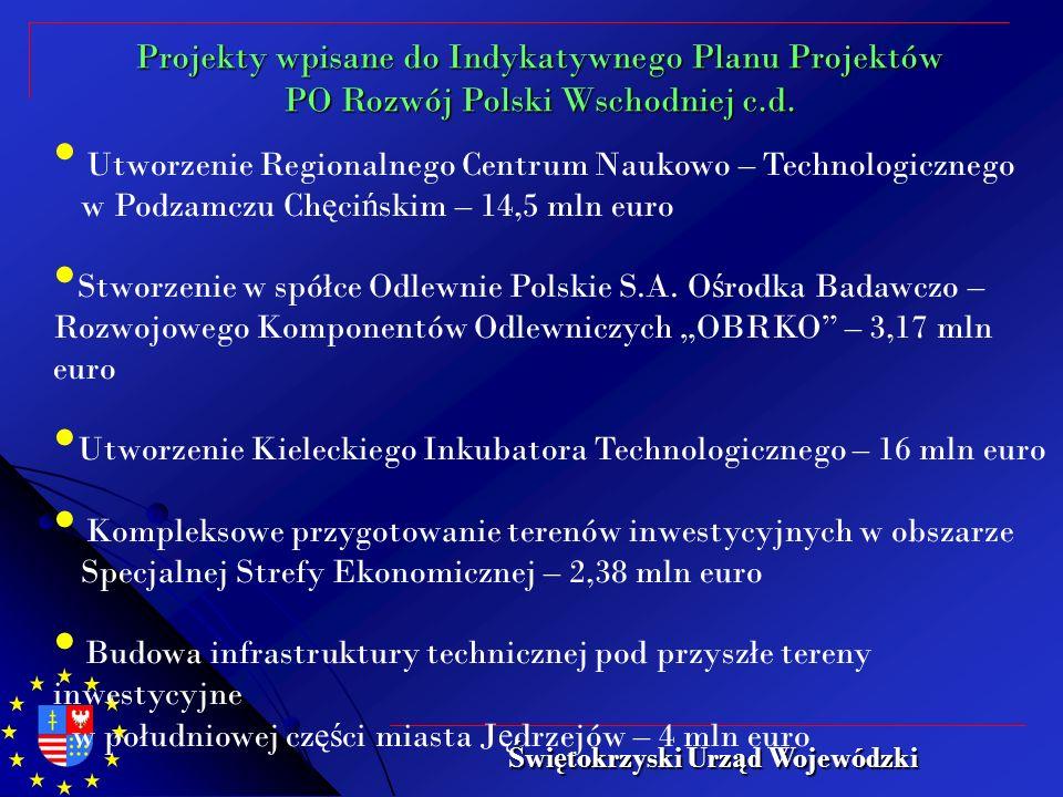 Utworzenie Regionalnego Centrum Naukowo – Technologicznego w Podzamczu Ch ę ci ń skim – 14,5 mln euro Stworzenie w spółce Odlewnie Polskie S.A.