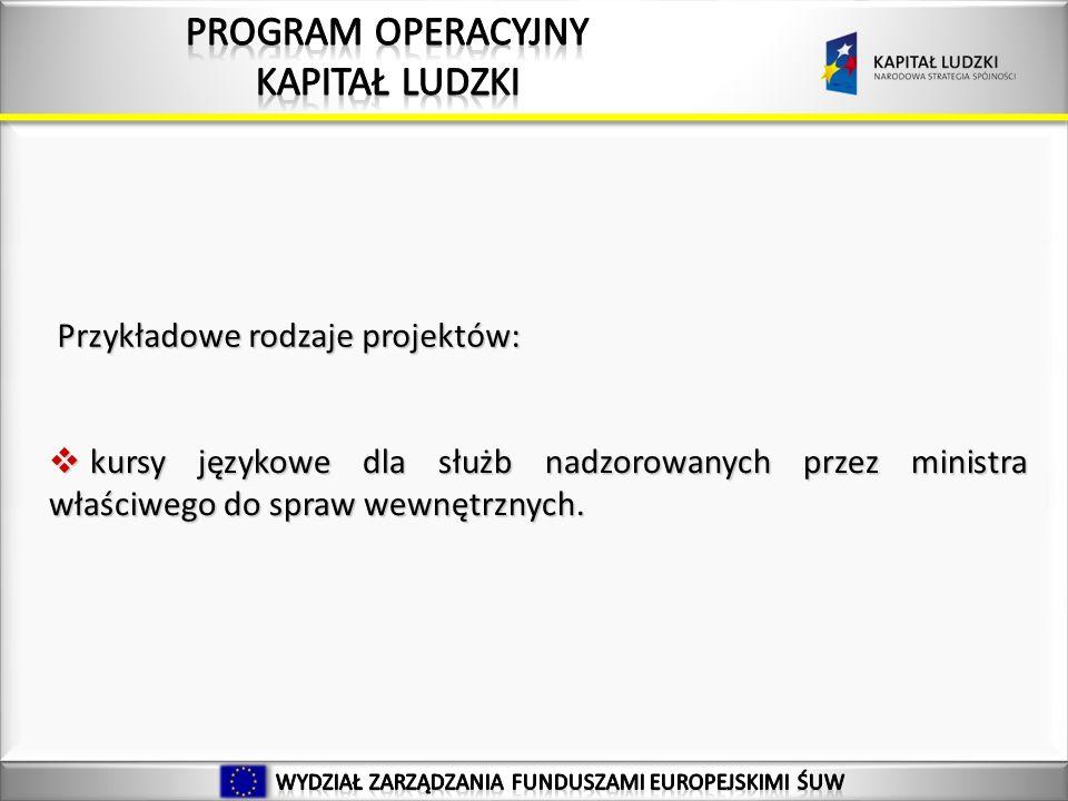 39 Przykładowe rodzaje projektów: kursy językowe dla służb nadzorowanych przez ministra właściwego do spraw wewnętrznych.