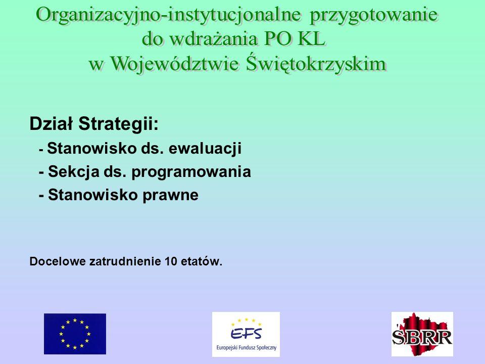 Dział Strategii: - Stanowisko ds. ewaluacji - Sekcja ds. programowania - Stanowisko prawne Docelowe zatrudnienie 10 etatów.