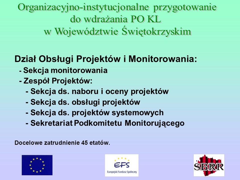 Dział Obsługi Projektów i Monitorowania: - Sekcja monitorowania - Zespół Projektów: - Sekcja ds.