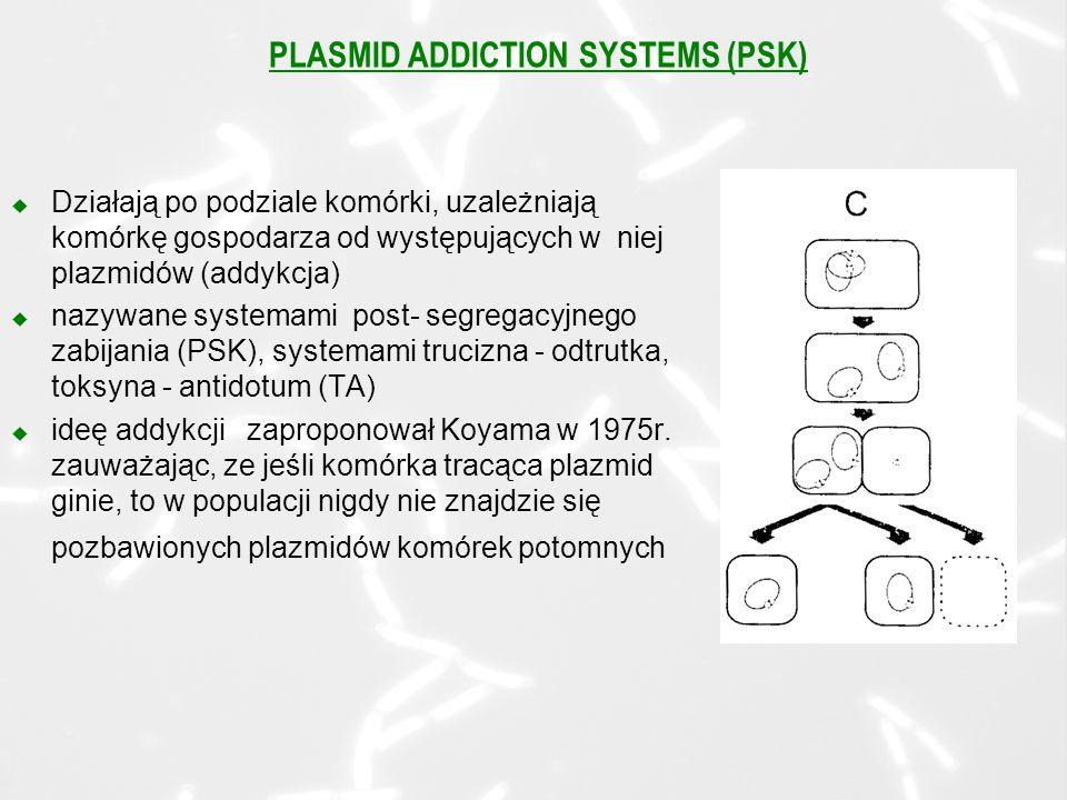 PLASMID ADDICTION SYSTEMS (PSK) u Działają po podziale komórki, uzależniają komórkę gospodarza od występujących w niej plazmidów (addykcja) u nazywane systemami post- segregacyjnego zabijania (PSK), systemami trucizna - odtrutka, toksyna - antidotum (TA) u ideę addykcji zaproponował Koyama w 1975r.