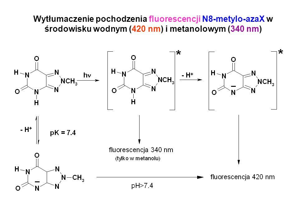 Wytłumaczenie pochodzenia fluorescencji N8-metylo-azaX w środowisku wodnym (420 nm) i metanolowym (340 nm)
