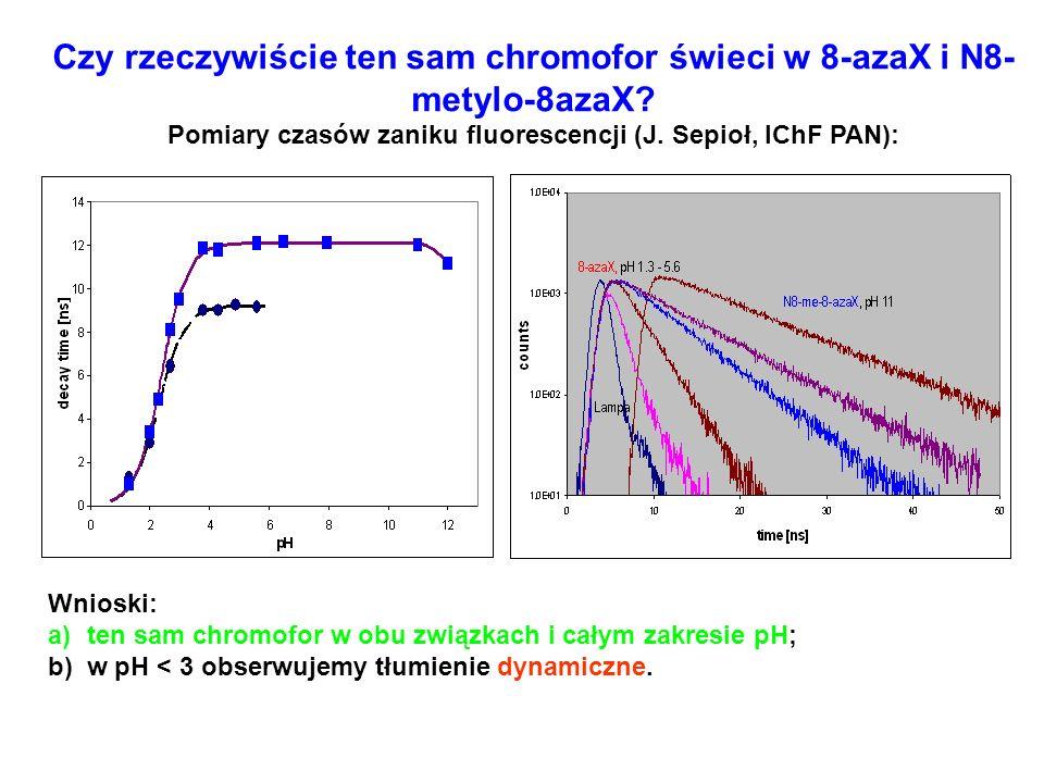 Czy rzeczywiście ten sam chromofor świeci w 8-azaX i N8- metylo-8azaX? Pomiary czasów zaniku fluorescencji (J. Sepioł, IChF PAN): Wnioski: a)ten sam c