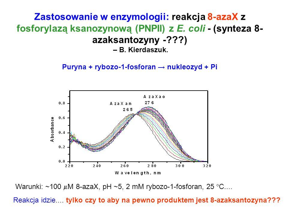 Zastosowanie w enzymologii: reakcja 8-azaX z fosforylazą ksanozynową (PNPII) z E. coli - (synteza 8- azaksantozyny -???) – B. Kierdaszuk. Puryna + ryb