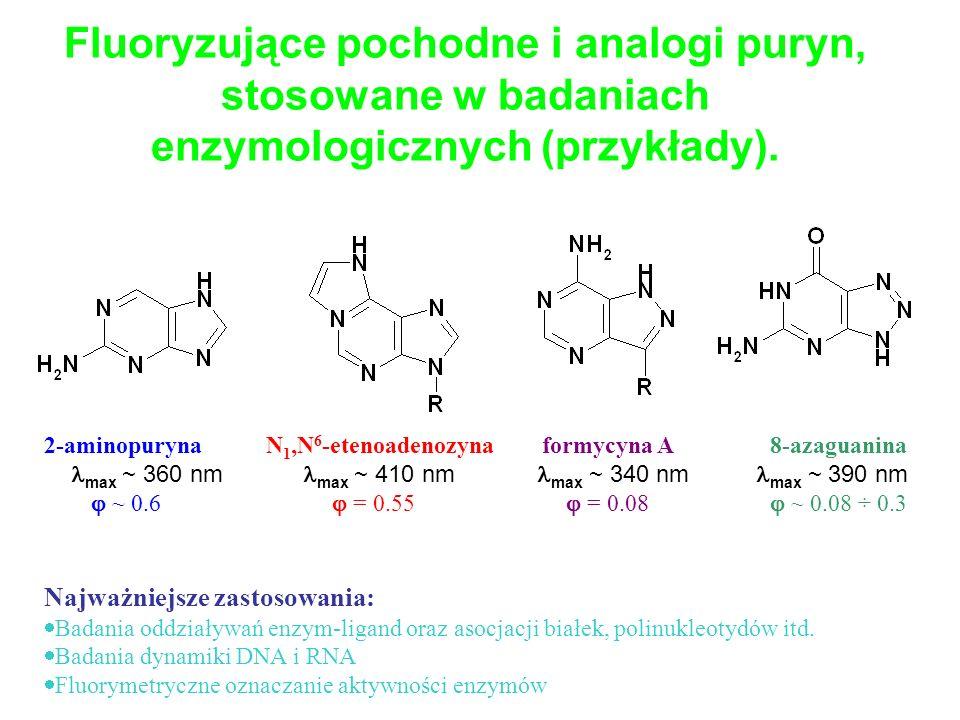 2-aminopuryna N 1,N 6 -etenoadenozyna formycyna A 8-azaguanina max ~ 360 nm max ~ 410 nm max ~ 340 nm max ~ 390 nm ~ 0.6 = 0.55 = 0.08 ~ 0.08 ÷ 0.3 Na