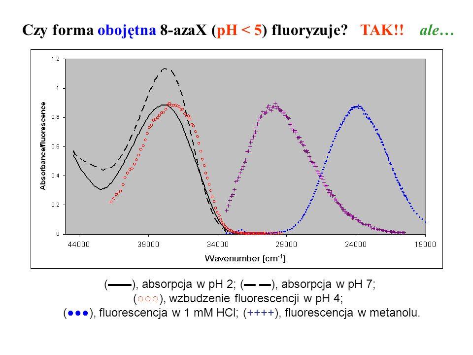 Czy forma obojętna 8-azaX (pH < 5) fluoryzuje? TAK!! ale… (), absorpcja w pH 2; ( ), absorpcja w pH 7; (), wzbudzenie fluorescencji w pH 4; (), fluore