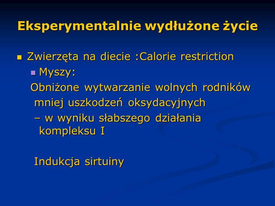 Eksperymentalnie wydłużone życie Zwierzęta na diecie :Calorie restriction Zwierzęta na diecie :Calorie restriction Myszy: Myszy: Obniżone wytwarzanie