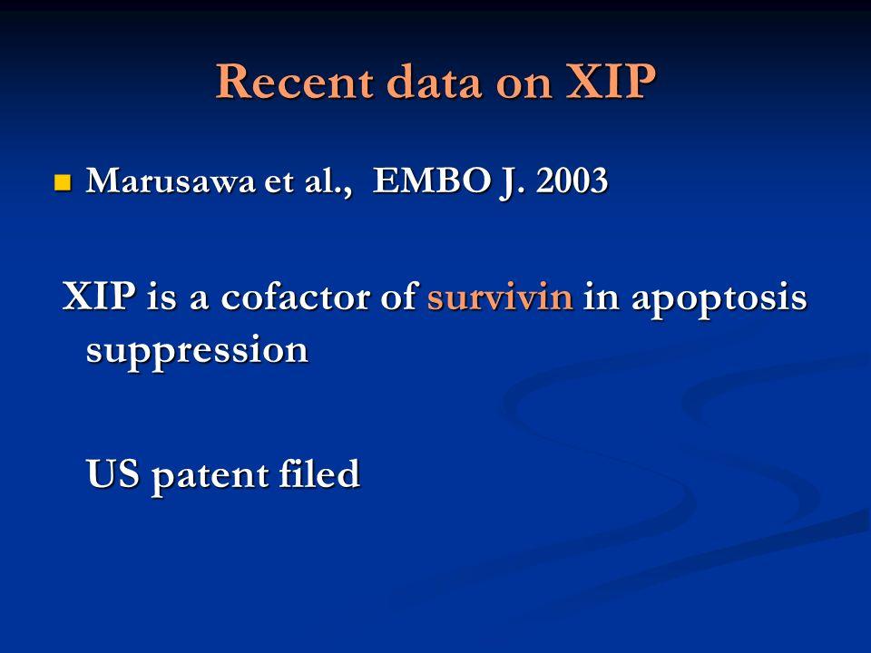Recent data on XIP Marusawa et al., EMBO J. 2003 Marusawa et al., EMBO J. 2003 XIP is a cofactor of survivin in apoptosis suppression XIP is a cofacto