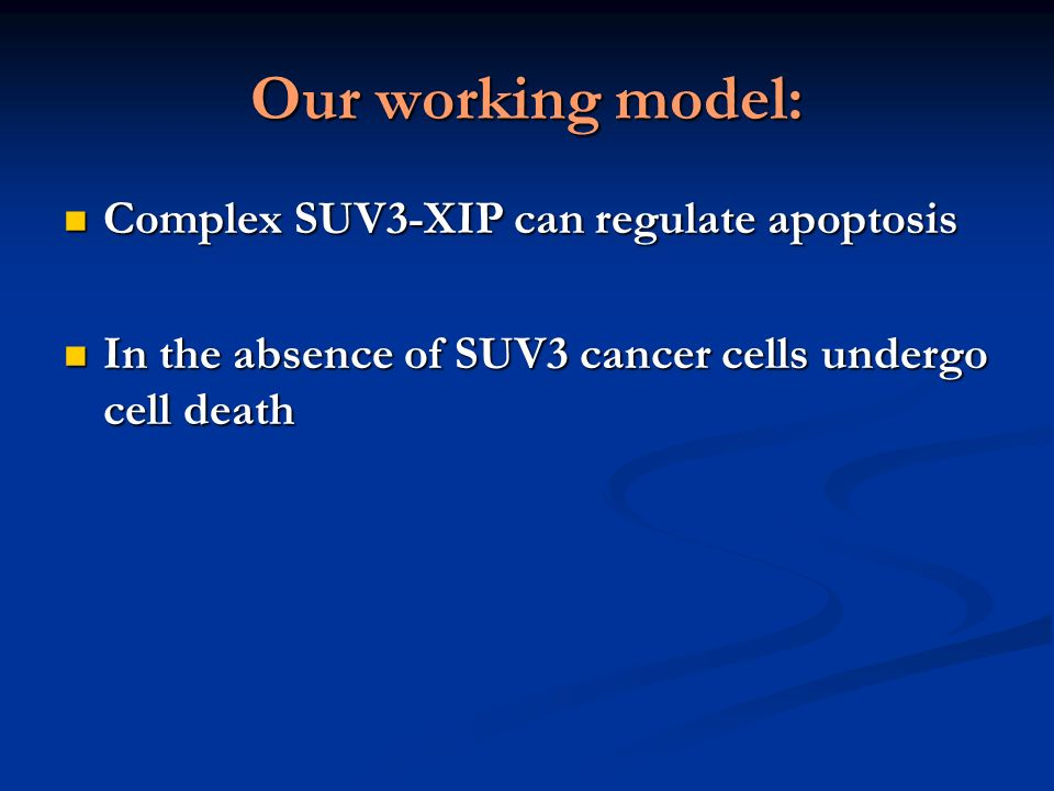 Our working model: Complex SUV3-XIP can regulate apoptosis Complex SUV3-XIP can regulate apoptosis In the absence of SUV3 cancer cells undergo cell death In the absence of SUV3 cancer cells undergo cell death