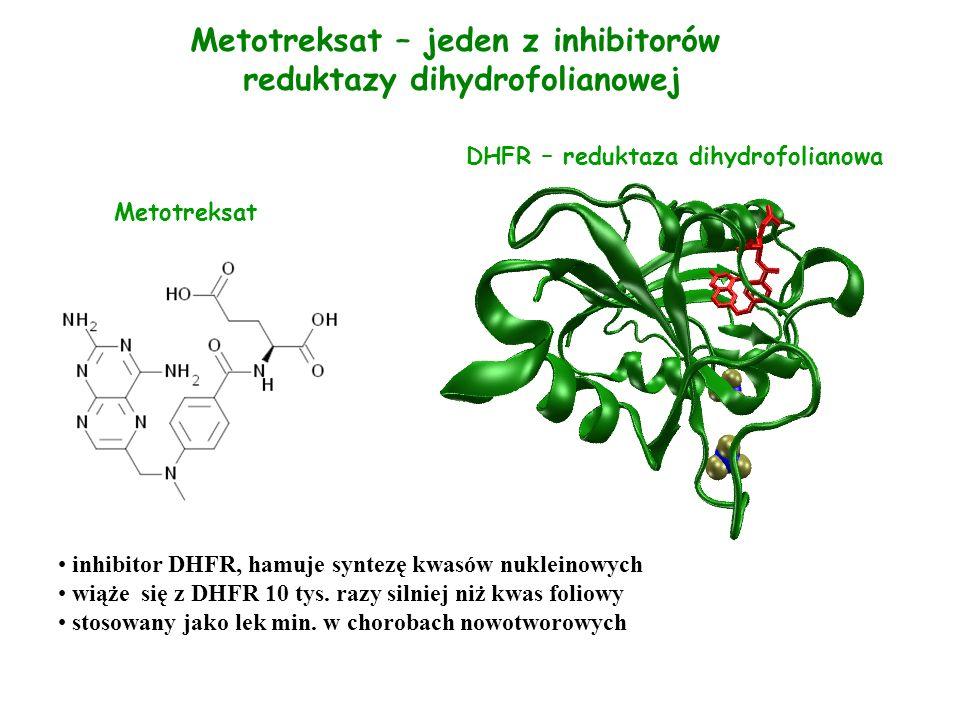 DHFR – reduktaza dihydrofolianowa Metotreksat inhibitor DHFR, hamuje syntezę kwasów nukleinowych wiąże się z DHFR 10 tys. razy silniej niż kwas foliow