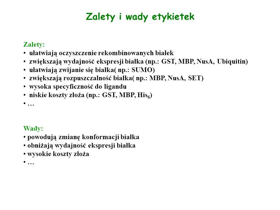 Zalety i wady etykietek Zalety: ułatwiają oczyszczenie rekombinowanych białek zwiększają wydajność ekspresji białka (np.: GST, MBP, NusA, Ubiquitin) u
