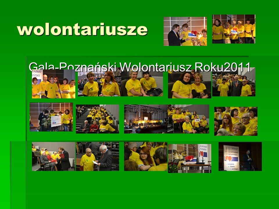 Jak zorganizować dobry wolontariat na przykładzie Hospicjum Palium?cd III.