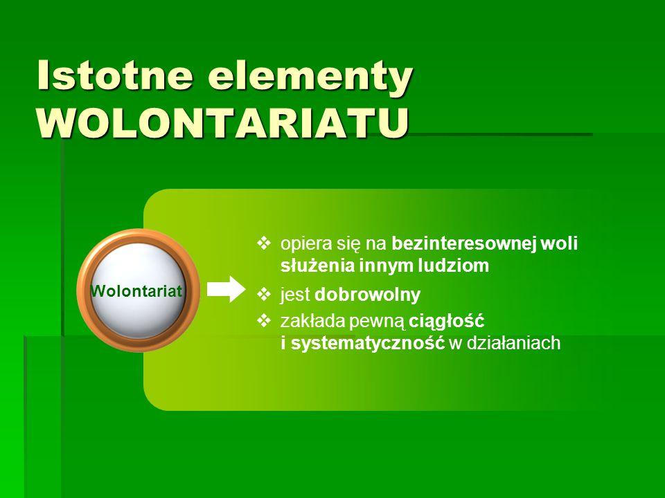 Jak zorganizować dobry wolontariat na przykładzie Hospicjum Palium?cd V.