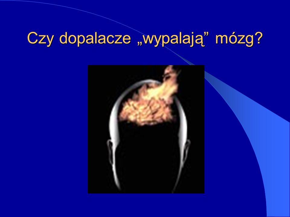 Czy dopalacze wypalają mózg?