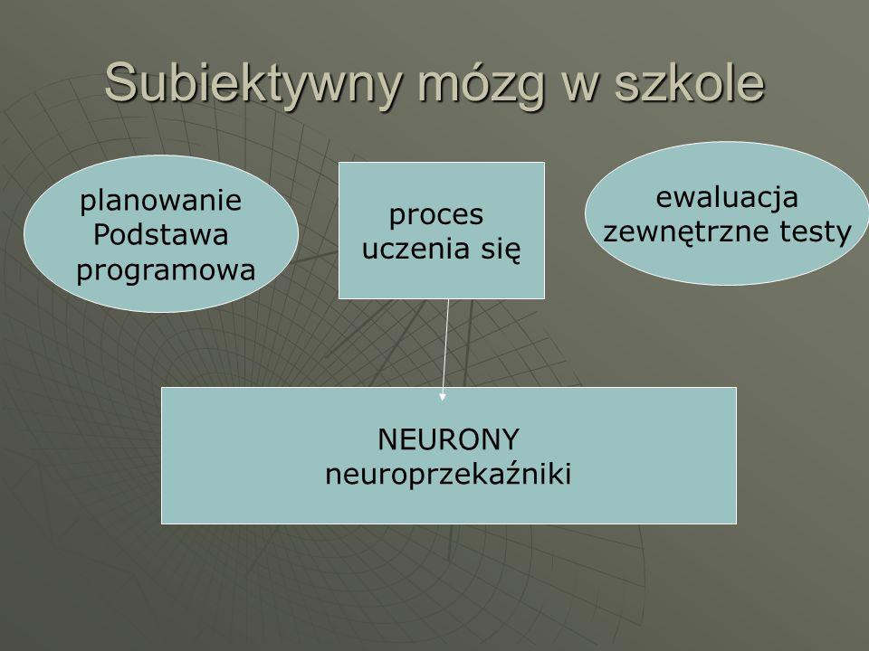 planowanie Podstawa programowa ewaluacja zewnętrzne testy proces uczenia się NEURONY neuroprzekaźniki Subiektywny mózg w szkole