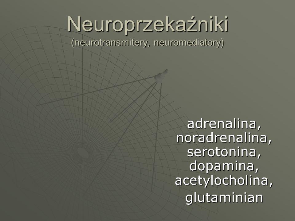 Neuroprzekaźniki (neurotransmitery, neuromediatory) adrenalina, noradrenalina, serotonina, dopamina, acetylocholina, glutaminian