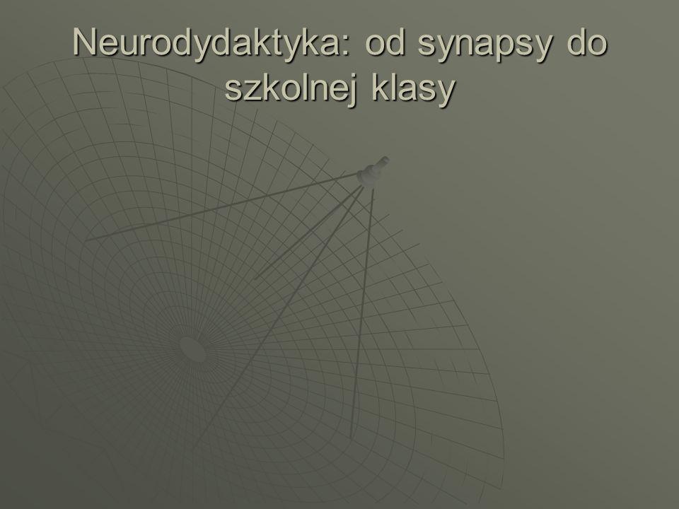 Detektor nowości Jak wprowadzać nowe informacje, by układ limbiczny traktował je jako ważne i potrzebne?