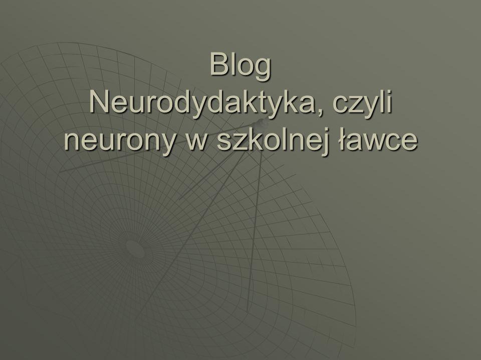 Blog Neurodydaktyka, czyli neurony w szkolnej ławce