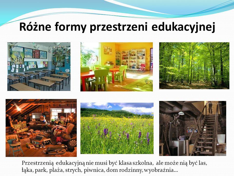 Różne formy przestrzeni edukacyjnej Przestrzenią edukacyjną nie musi być klasa szkolna, ale może nią być las, łąka, park, plaża, strych, piwnica, dom rodzinny, wyobraźnia…