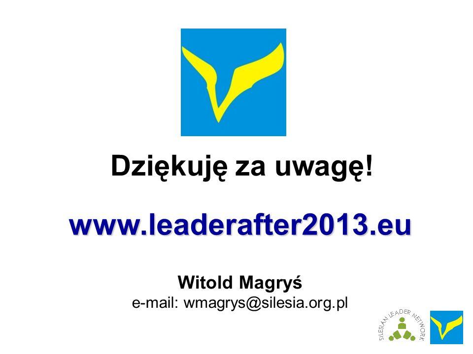 Dziękuję za uwagę! Witold Magryś e-mail: wmagrys@silesia.org.pl www.leaderafter2013.eu