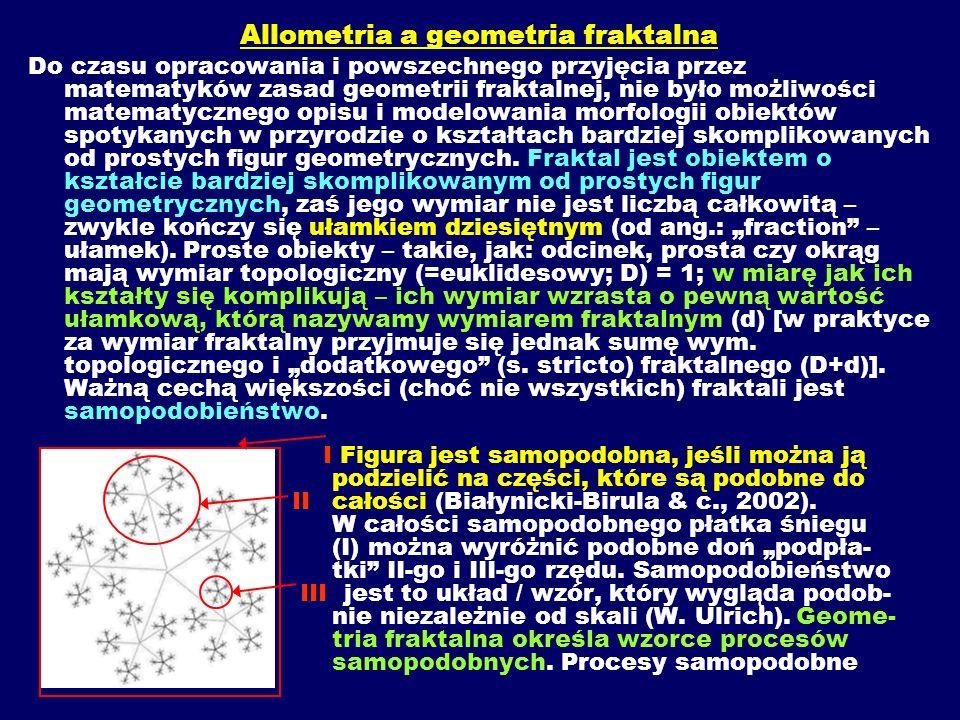 Allometria a geometria fraktalna Do czasu opracowania i powszechnego przyjęcia przez matematyków zasad geometrii fraktalnej, nie było możliwości matematycznego opisu i modelowania morfologii obiektów spotykanych w przyrodzie o kształtach bardziej skomplikowanych od prostych figur geometrycznych.