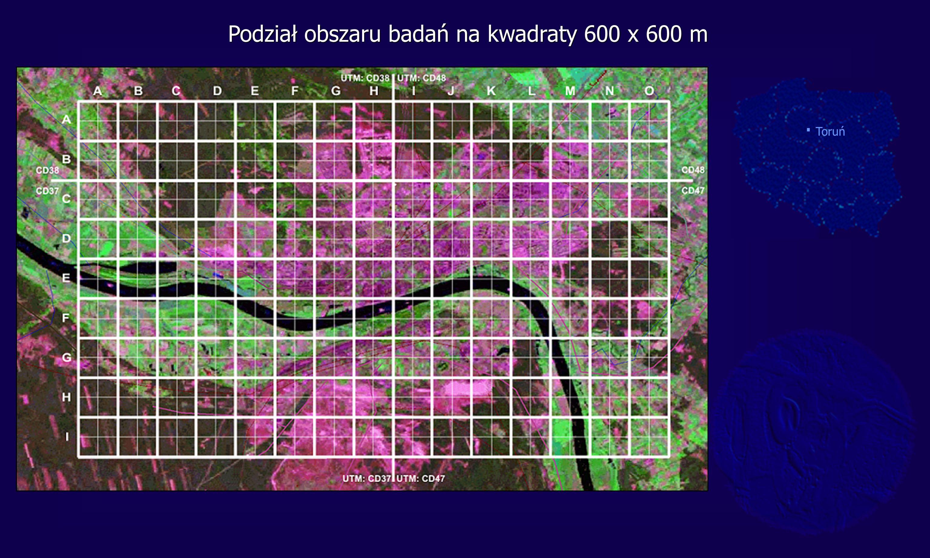 Podział obszaru badań na kwadraty 600 x 600 m. Toruń