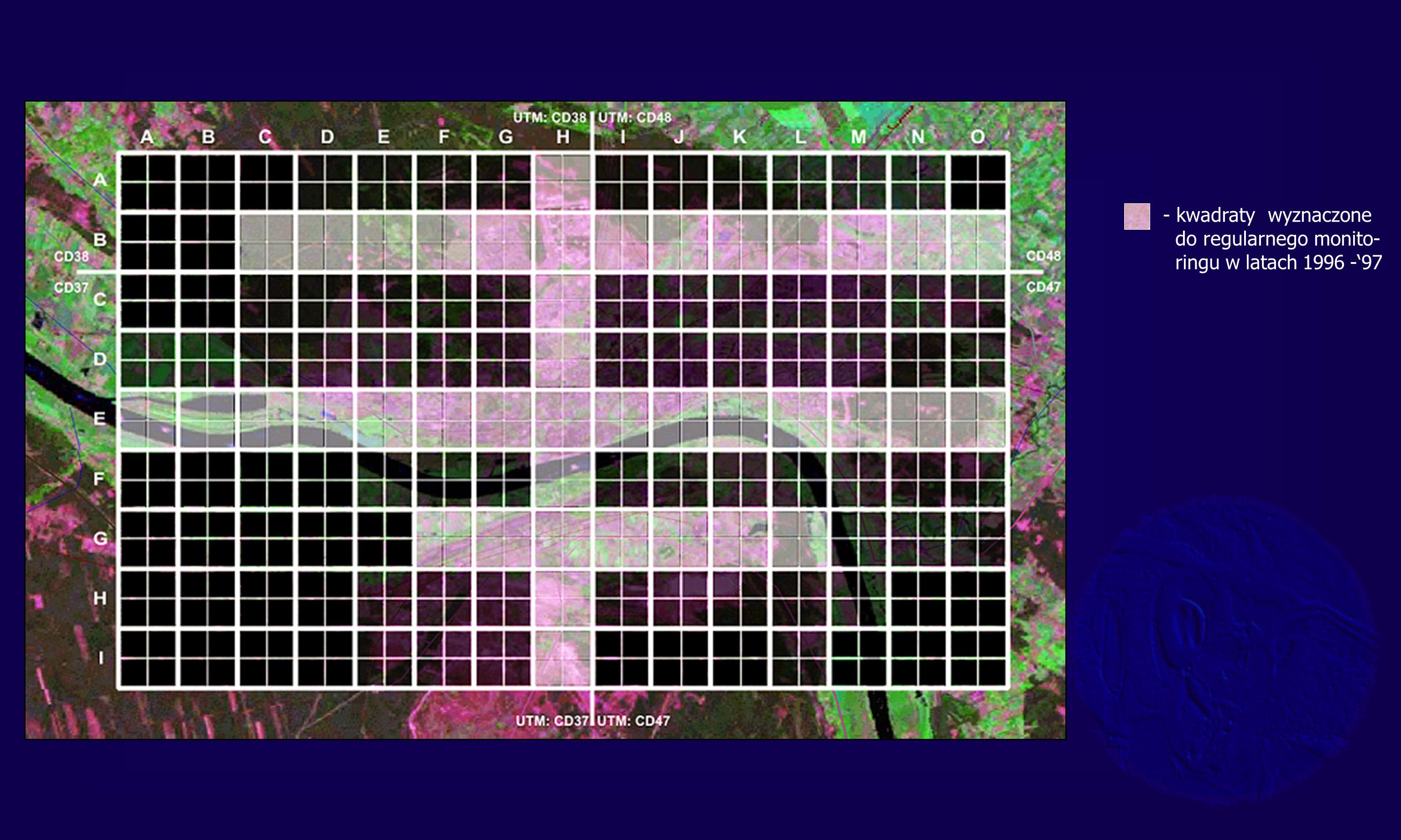 - kwadraty wyznaczone do regularnego monito- ringu w latach 1996 -97