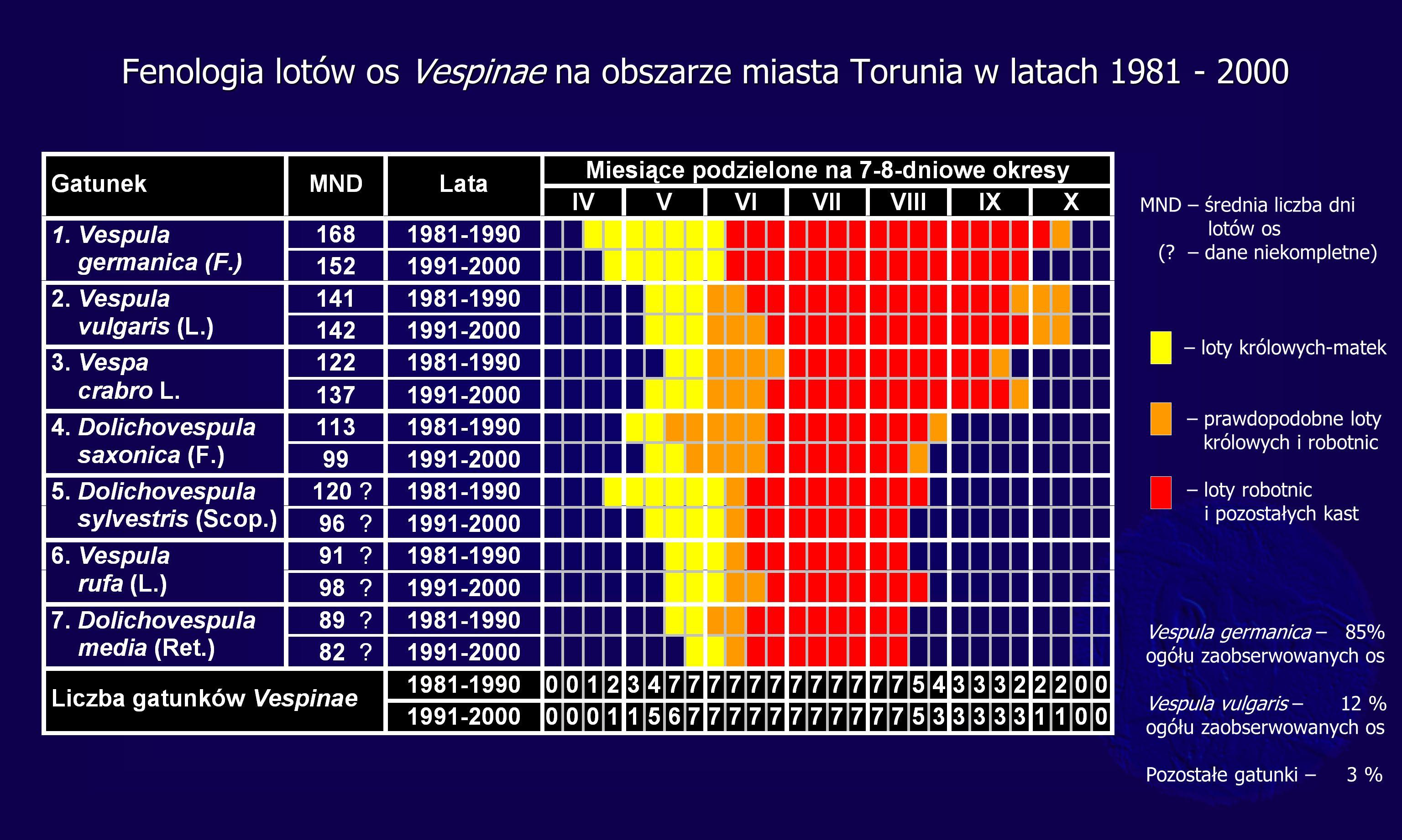Fenologia lotów os Vespinae na obszarze miasta Torunia w latach 1981 - 2000 MND – średnia liczba dni lotów os (? – dane niekompletne) – loty królowych
