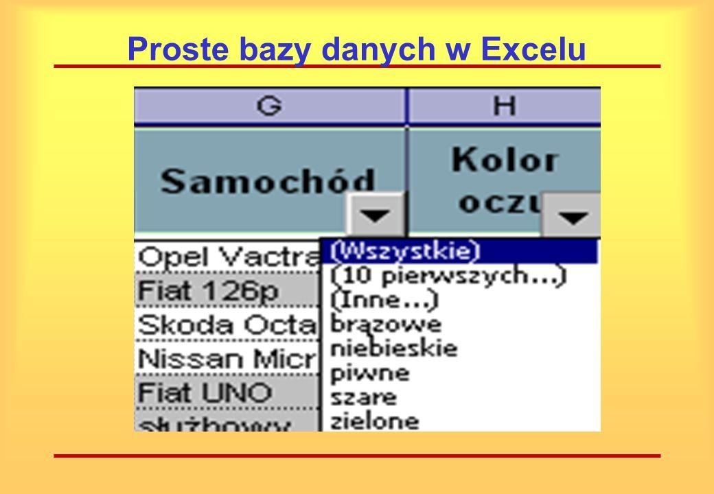 Proste bazy danych w Excelu Możliwe są następujące kryteria filtrowania: wszystkie 10 pierwszych inne każda z aktualnie wprowadzonych wartości w tym polu.