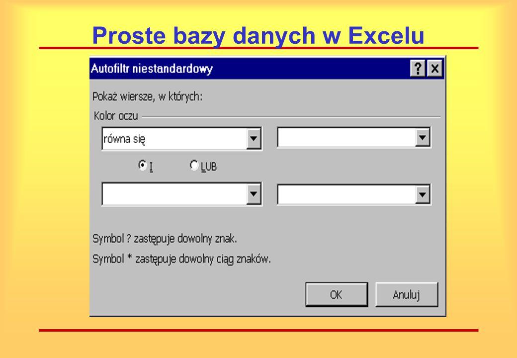 Proste bazy danych w Excelu