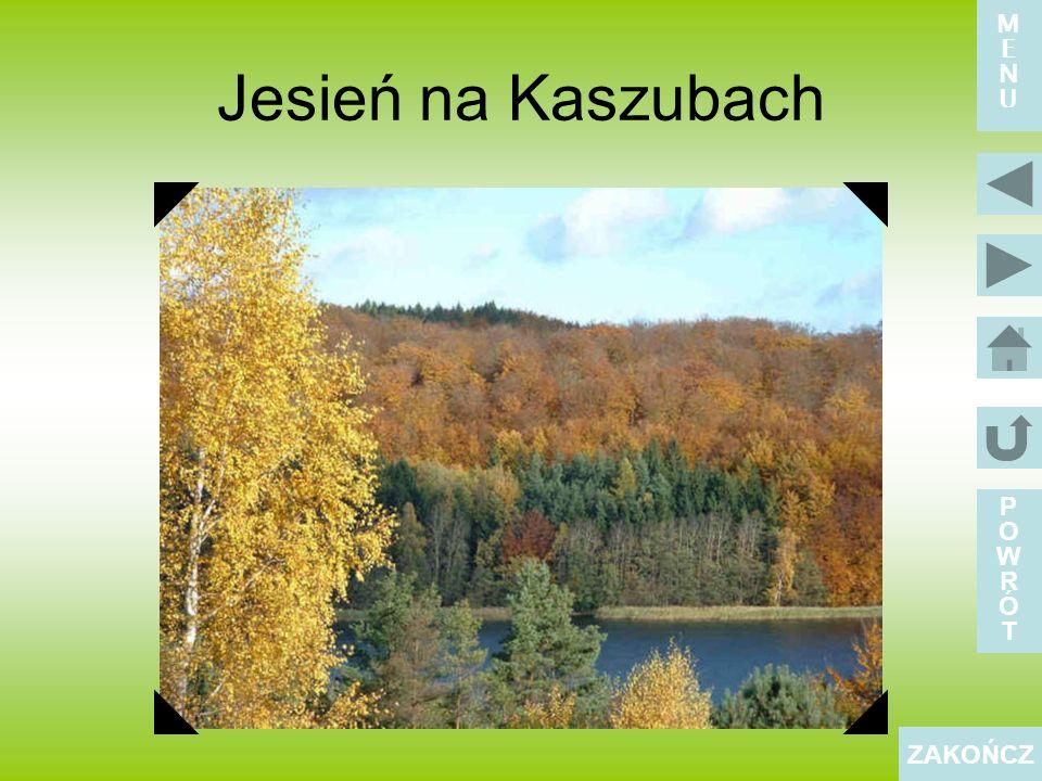 Jesień na Kaszubach POWRÓTPOWRÓT ZAKOŃCZ MENUMENU