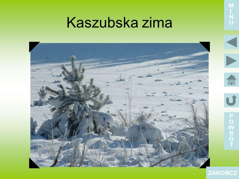 Kaszubska zima POWRÓTPOWRÓT ZAKOŃCZ MENUMENU