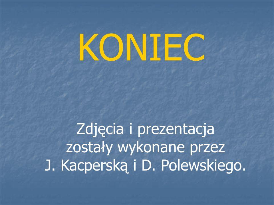 Zdjęcia i prezentacja zostały wykonane przez J. Kacperską i D. Polewskiego. KONIEC