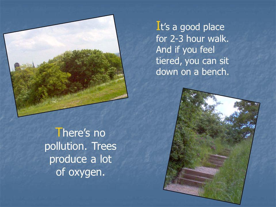 N ie ma tam zanieczyszczonego powietrza.Drzewa produkują dużo tlenu.