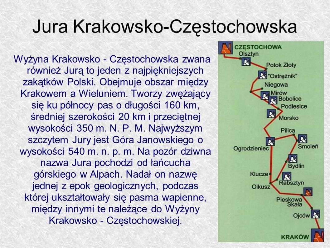 Wyżyna Krakowsko - Częstochowska zwana również Jurą to jeden z najpiękniejszych zakątków Polski. Obejmuje obszar między Krakowem a Wieluniem. Tworzy z