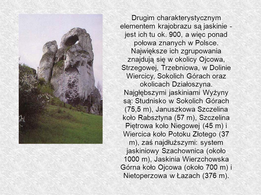 Drugim charakterystycznym elementem krajobrazu są jaskinie - jest ich tu ok. 900, a więc ponad połowa znanych w Polsce. Największe ich zgrupowania zna